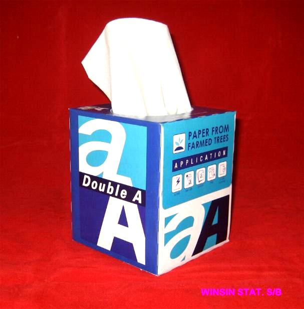 Double A tissue box